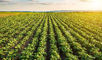 農場景觀與生態環境