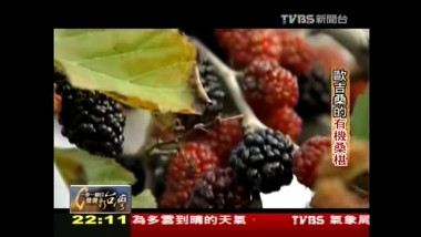 2011年5月  TVBS-N 「一步一腳印  發現新台灣」