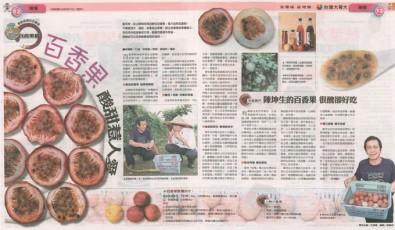 2011年(民國100年)9月 中國時報 週末「旺到報」