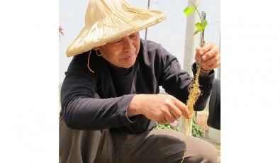 2011年4月  三立台灣台  「草地狀元」