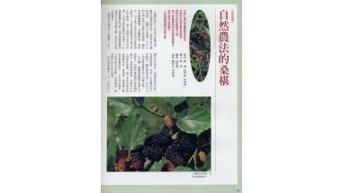1998年(民國87年)6月  綠生活  第110期