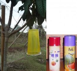 環保黏蠅器