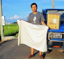 玉米澱粉塑膠袋(生物可分解塑膠袋)