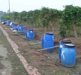 利用資源回收的塑膠桶儲存備用灌溉水